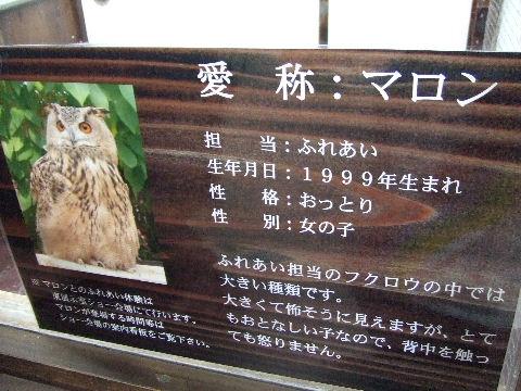 2010_07240124.jpg