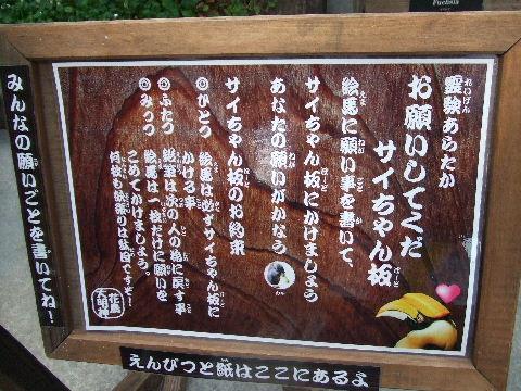 2010_07240204.jpg