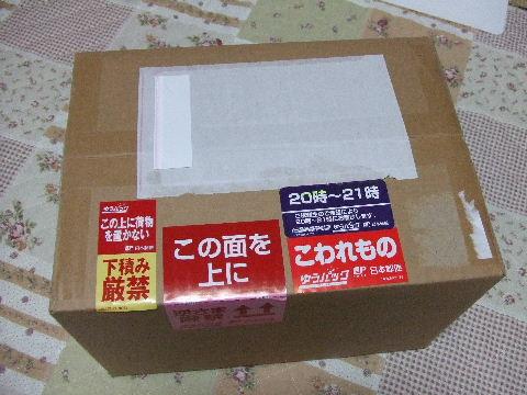 2010_11070078.jpg