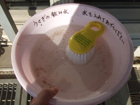 2011_01120019.jpg