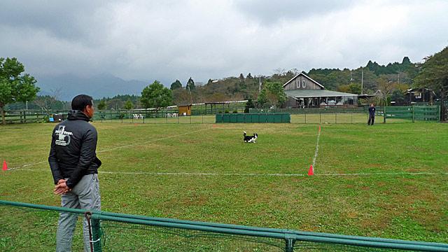 Mt.Fuji Cup  (2)