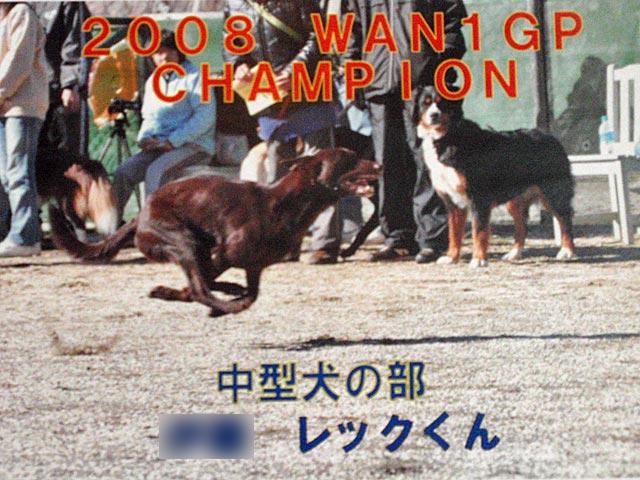 wan 1 GP  (22)