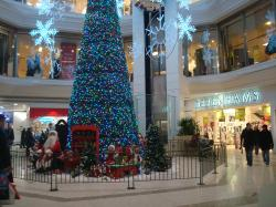 christmas tree in central