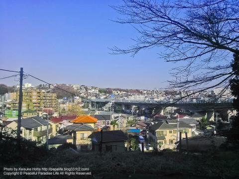 横浜市保土ヶ谷区川島町にある杉山神社からの眺め