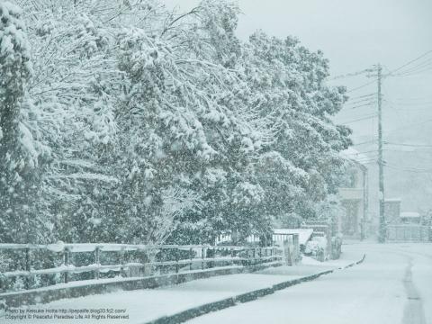 雪が降る町、岡津町 2