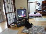 20091018大町そば祭り (27)
