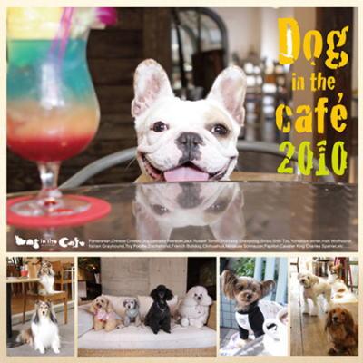 dogcafe1.jpg