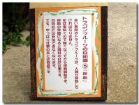 ドラゴンフルーツの豆知識-5-