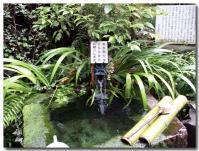姫の井戸-1-