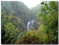 展望台からの善五郎の滝