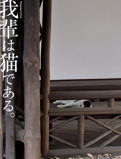 kazu045.jpg
