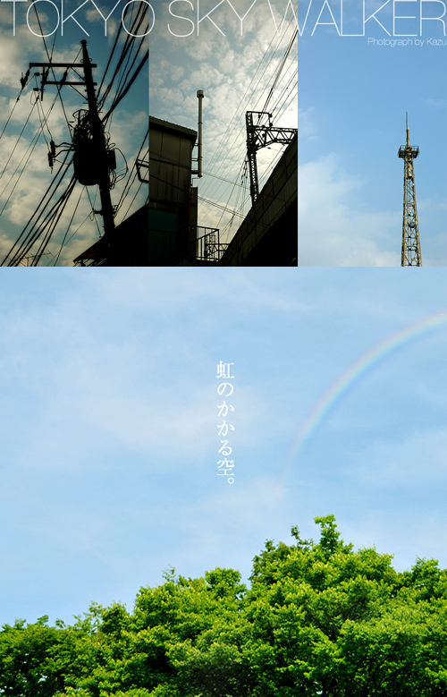 kazu081_20100711220309.jpg