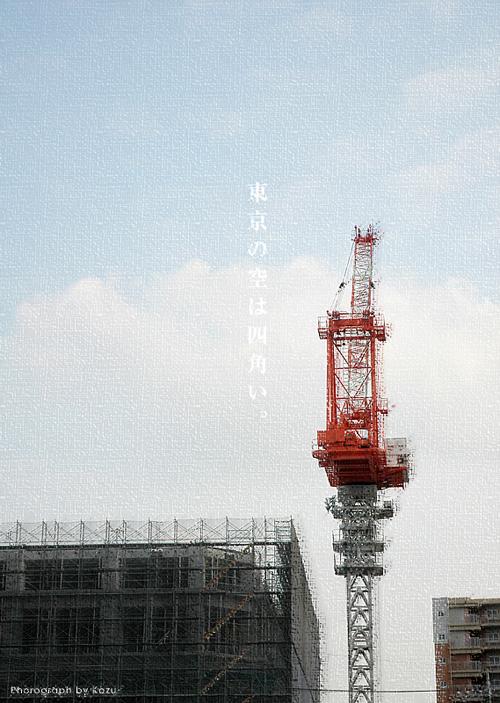 kazu348_20101112204556.jpg