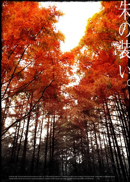 n_064.jpg