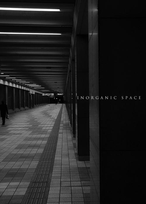 n_067.jpg