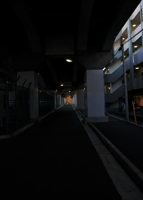 n_125.jpg