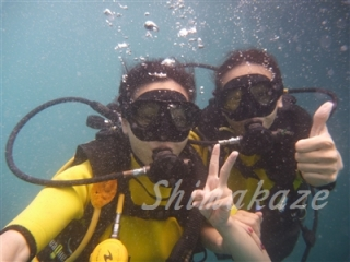 シミラン諸島のダイビングクルーズ予約は海中案内人まで