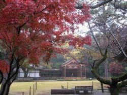 武田神社 005