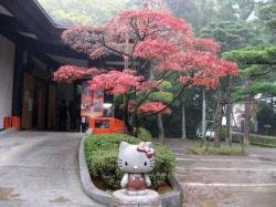 武田神社 010
