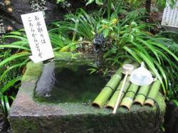 武田神社 011