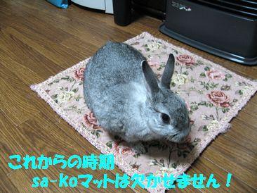 sa-ko 20111218 001