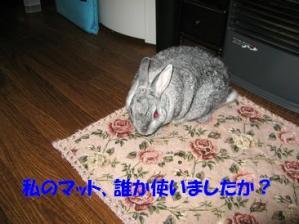 sa-ko 20111227 001
