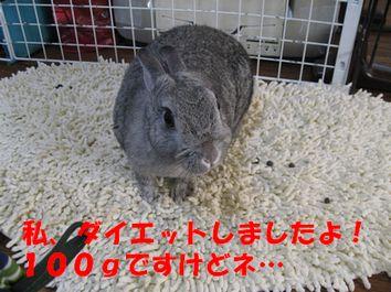 sa-ko 20120215 001