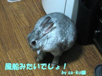 sa-ko 20120227 001