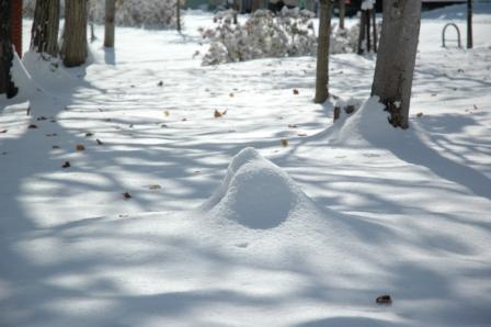 1103初雪3