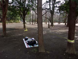 スラックライン@和田堀公園