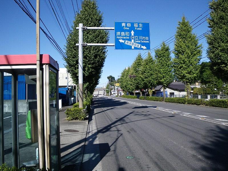 IMGP1325r.jpg