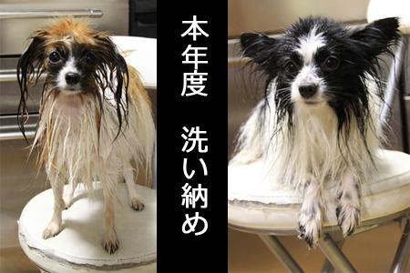 yuzume-shan.jpg
