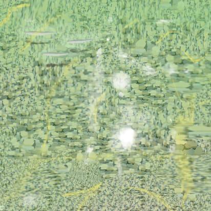 きれいな琵琶湖の水面
