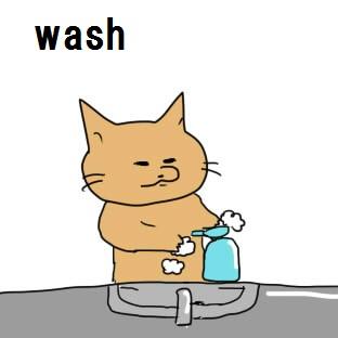 wash.jpg