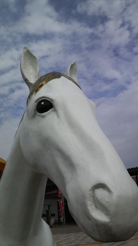 ぐらんぱる馬