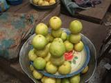 マケネネのグレープフルーツ