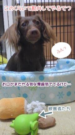 20091016_2.jpg
