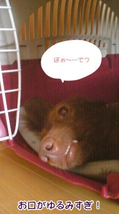 2009_10_14.jpg