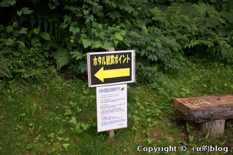 misawapark10a_eip.jpg
