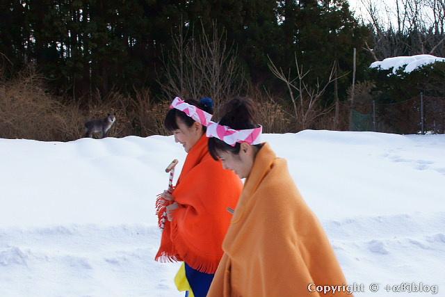 mochi11-10_eip.jpg