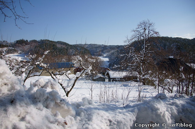 snow1101-01_eip.jpg