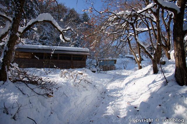 snow1101-02_eip.jpg