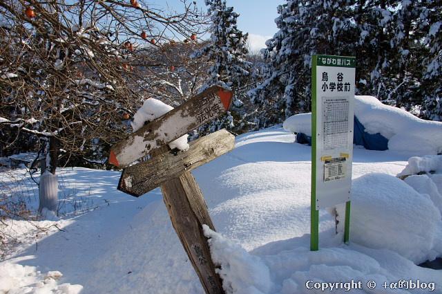 snow1101-12_eip.jpg