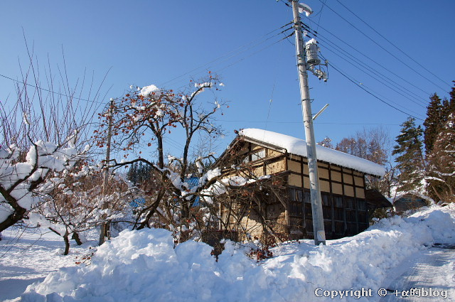 snow1101-14_eip.jpg