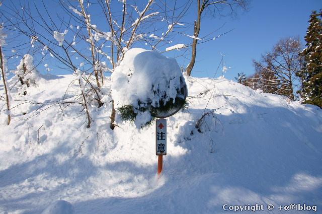 snow1101-15_eip.jpg