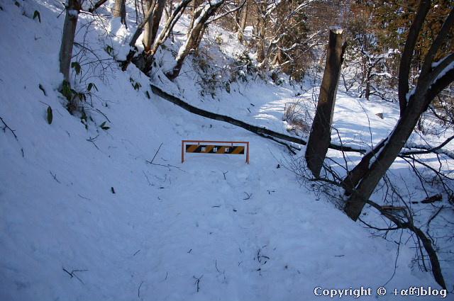snow1101-16_eip.jpg