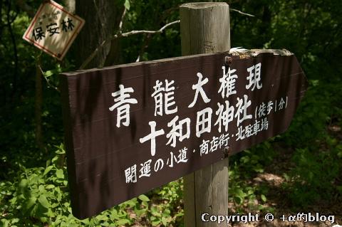 towada1005-20_eip.jpg