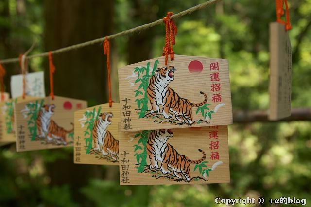 towada1005-40_eip.jpg