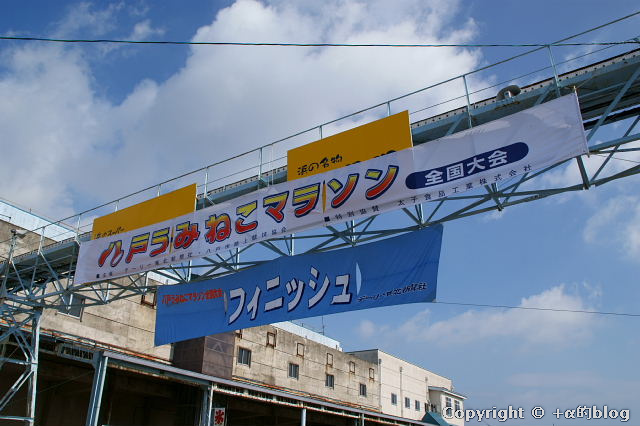 umineko-m10c_eip.jpg