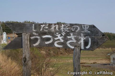 utugisawa10a_eip.jpg